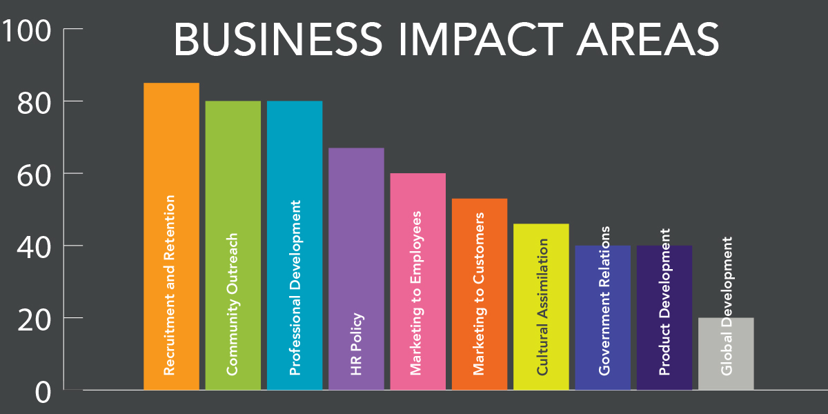 Business Impact Areas: Recruitment/Retention, Community Outreach, Pro Development, HR Policy, Marketing to Employees, Marketing to Customers, Cultural Assimilation, Government Relations, Product Development, Global Development